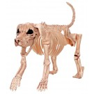Crazy Bones 18181 Halloween Skeleton Dog, 10.75""